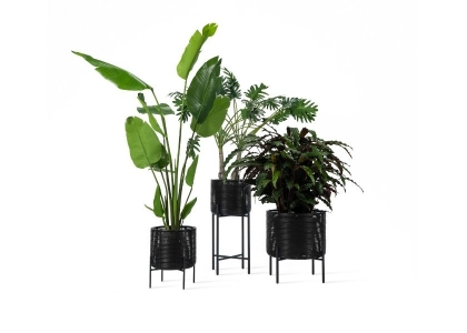 IVO PLANT STAND